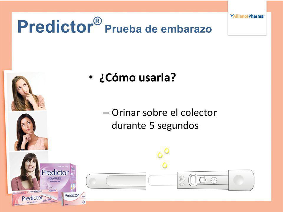 Predictor ® Prueba de embarazo ¿Cómo usarla? – Orinar sobre el colector durante 5 segundos