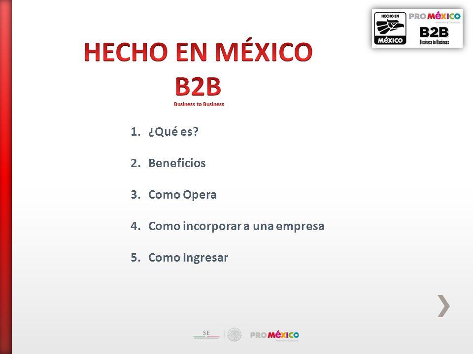 1.¿Qué es 2.Beneficios 3.Como Opera 4.Como incorporar a una empresa 5.Como Ingresar