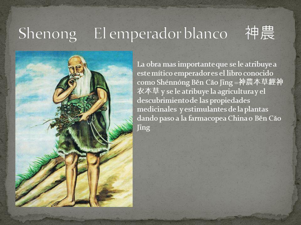 La obra mas importante que se le atribuye a este mítico emperador es el libro conocido como Shénnóng Běn C ǎ o Jīng = y se le atribuye la agricultura