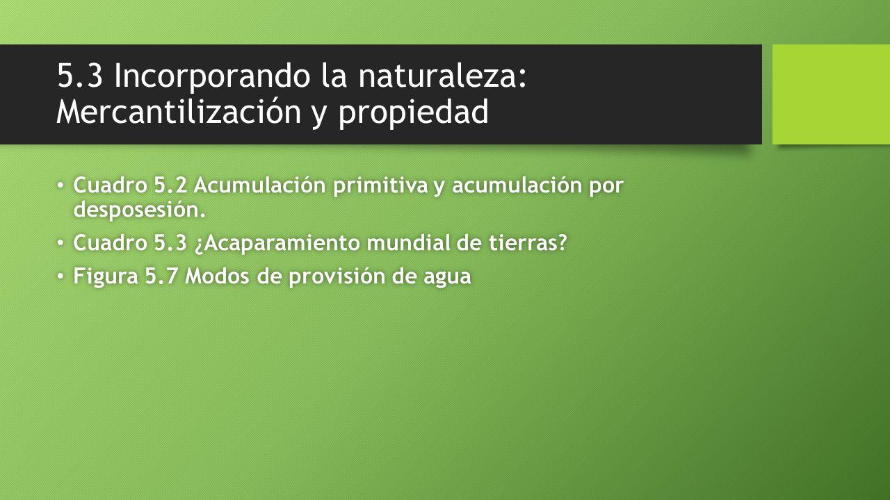 5.3 Incorporando la naturaleza: Mercantilización y propiedad Cuadro 5.2 Acumulación primitiva y acumulación por desposesión. Cuadro 5.2 Acumulación pr