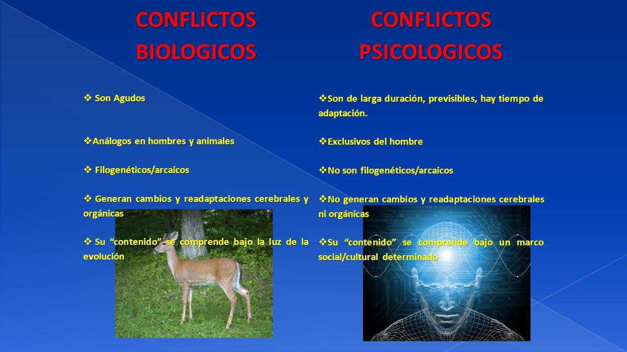 CONFLICTOS BIOLOGICOS CONFLICTOS PSICOLOGICOS Son Agudos Son Agudos Análogos en hombres y animales Análogos en hombres y animales Filogenéticos/arcaic