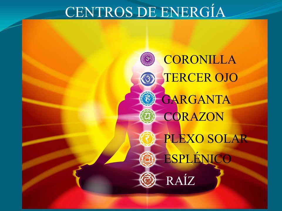 CENTROS DE ENERGÍA CORONILLA TERCER OJO GARGANTA CORAZON PLEXO SOLAR ESPLÉNICO RAÍZ