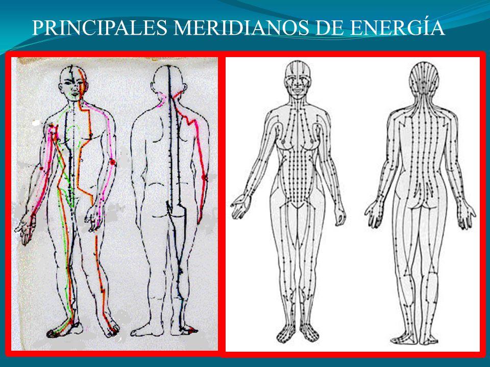 PRINCIPALES MERIDIANOS DE ENERGÍA