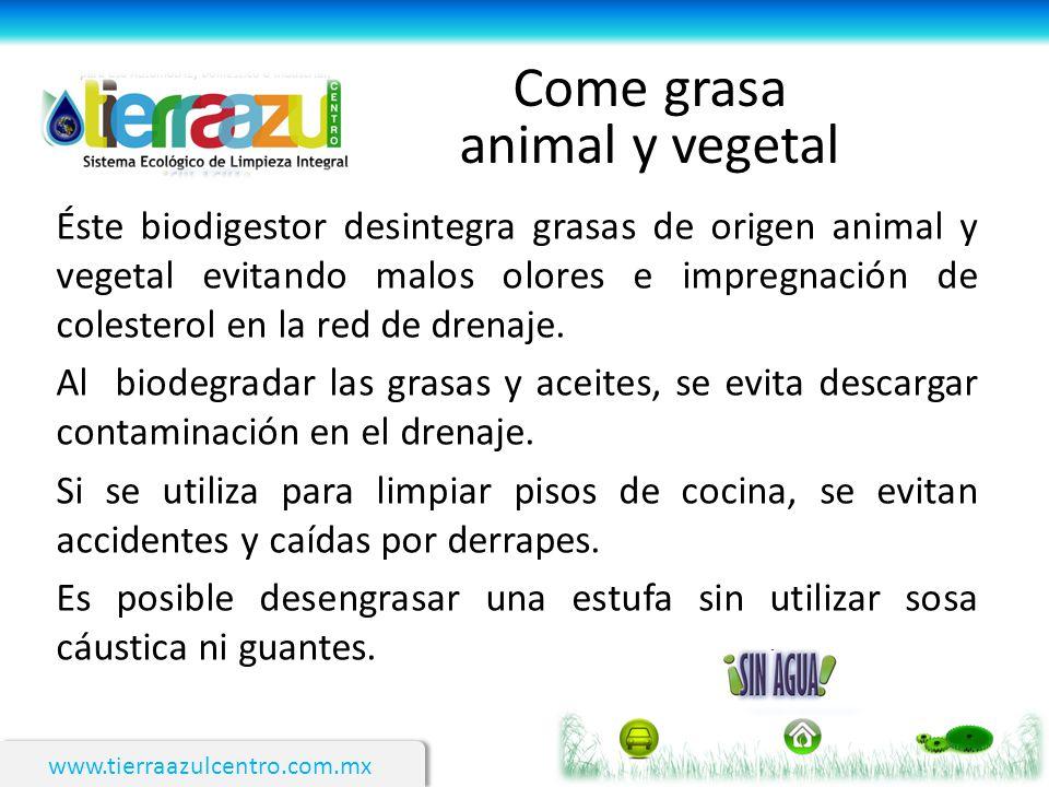 www.tierraazulcentro.com.mx Come grasa animal y vegetal Éste biodigestor desintegra grasas de origen animal y vegetal evitando malos olores e impregna