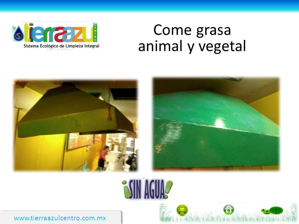 www.tierraazulcentro.com.mx Come grasa animal y vegetal