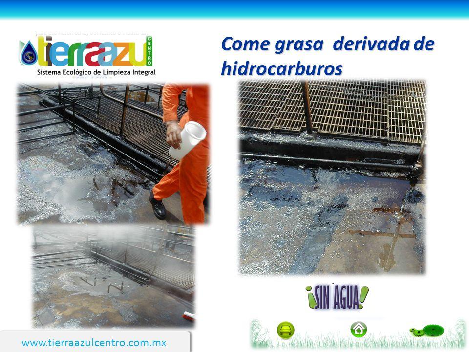 www.tierraazulcentro.com.mx Come grasa derivada de hidrocarburos