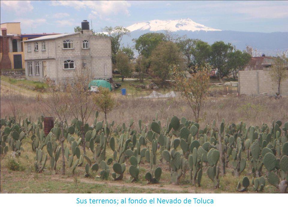 Sus terrenos; al fondo el Nevado de Toluca