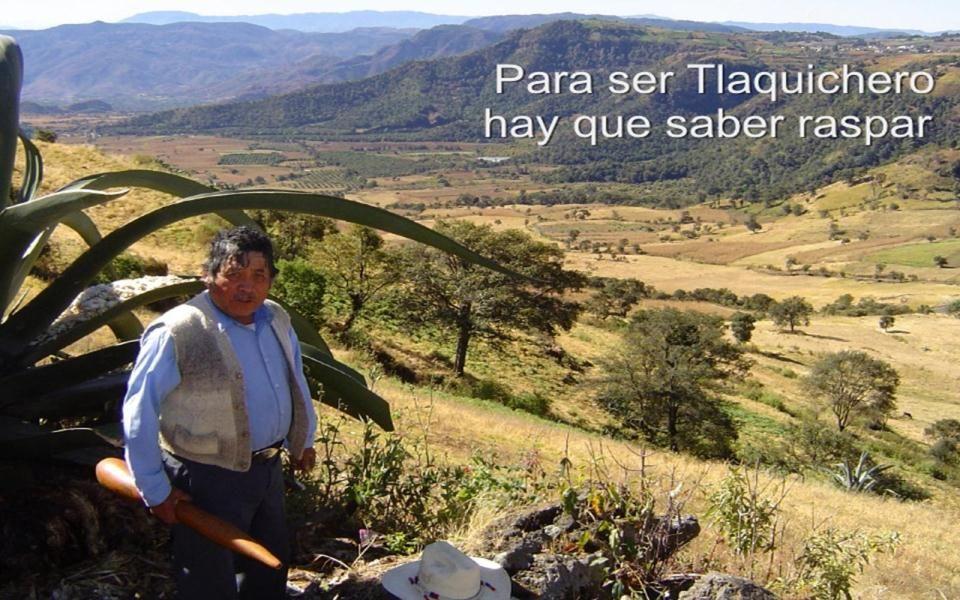 Guillermo Alducin V.