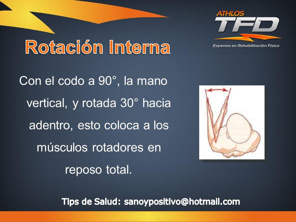 Con el codo a 90°, la mano vertical, y rotada 30° hacia adentro, esto coloca a los músculos rotadores en reposo total.