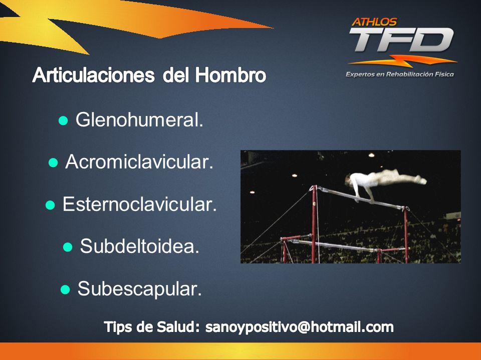 Glenohumeral. Acromiclavicular. Esternoclavicular. Subdeltoidea. Subescapular.