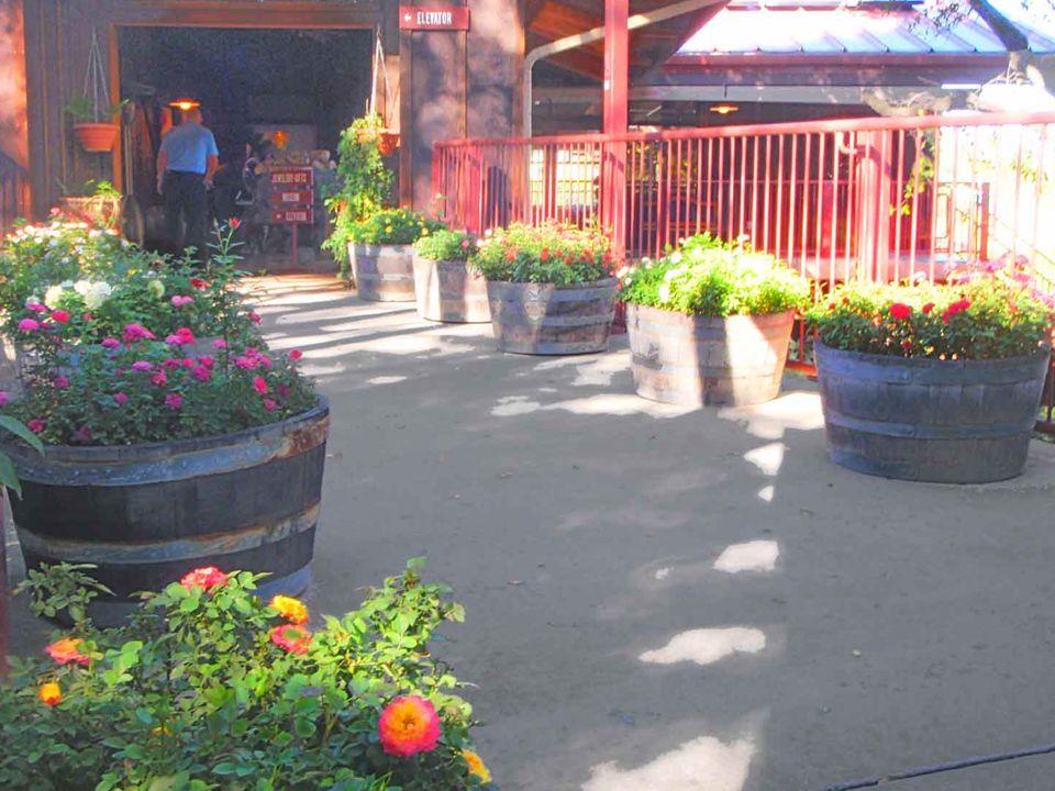 La entrada a los jardines y estacionamiento