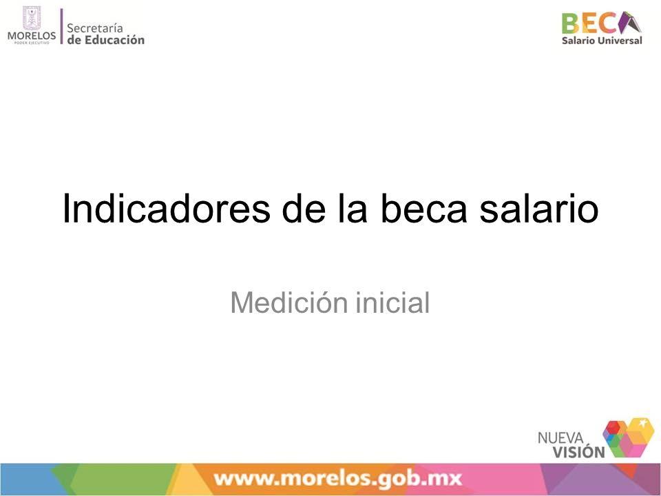 Indicadores de la beca salario Medición inicial