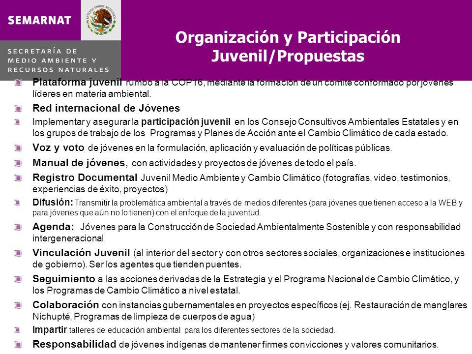Organización y Participación Juvenil/Propuestas Plataforma juvenil rumbo a la COP16, mediante la formación de un comité conformado por jóvenes líderes