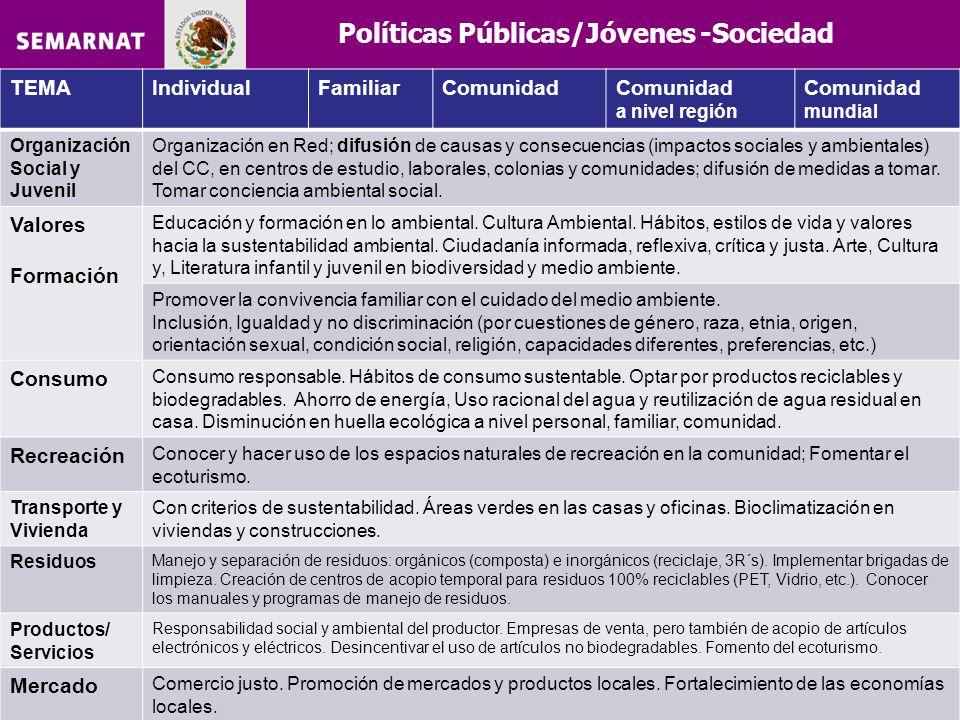 Políticas Públicas/Jóvenes -Sociedad TEMAIndividualFamiliarComunidad a nivel región Comunidad mundial Organización Social y Juvenil Organización en Re