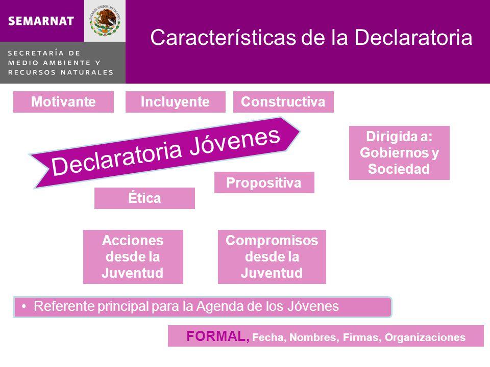 Características de la Declaratoria Declaratoria Jóvenes Referente principal para la Agenda de los Jóvenes MotivanteConstructiva Propositiva Ética Incl