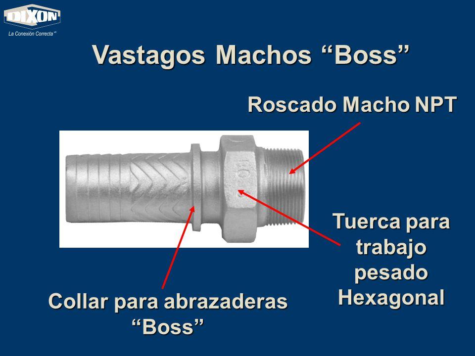 Vastagos Machos Boss Roscado Macho NPT Collar para abrazaderas Boss Tuerca para trabajo pesado Hexagonal