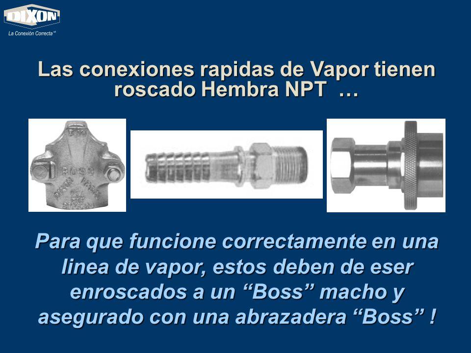 Las conexiones rapidas de Vapor tienen roscado Hembra NPT … Para que funcione correctamente en una linea de vapor, estos deben de eser enroscados a un
