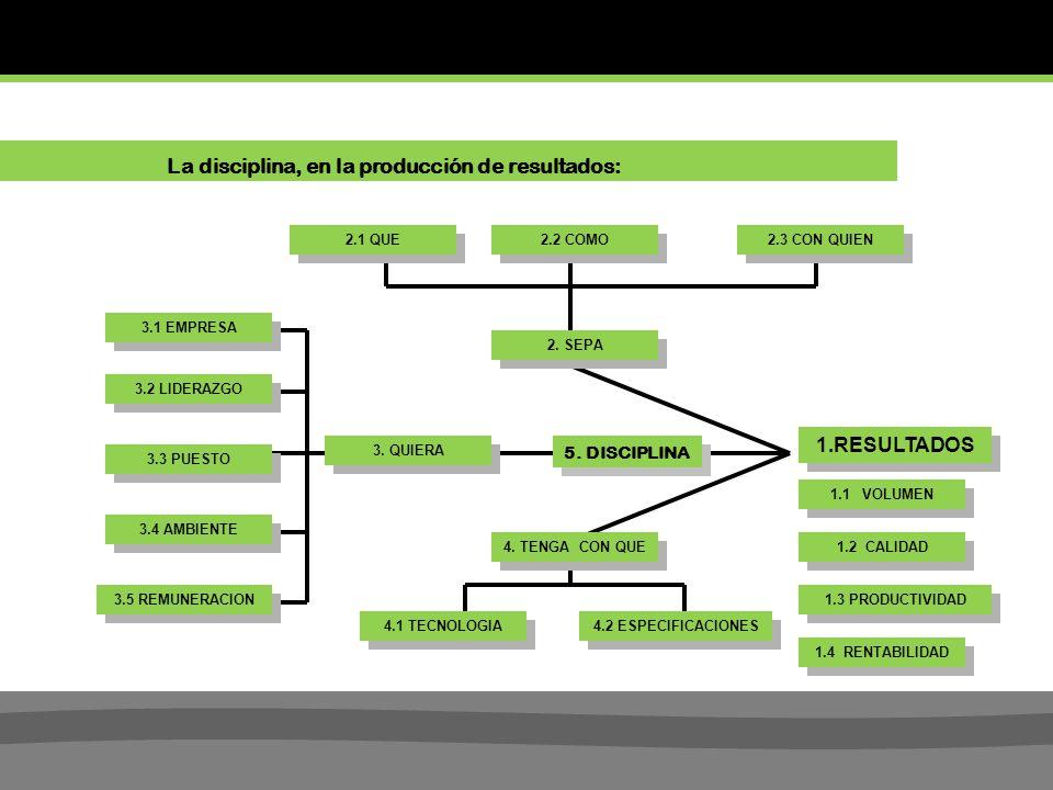 1.RESULTADOS 1.1 VOLUMEN 1.2 CALIDAD 1.3 PRODUCTIVIDAD 1.4 RENTABILIDAD 3.1 EMPRESA 3.2 LIDERAZGO 3.3 PUESTO 3.4 AMBIENTE 3.5 REMUNERACION 4.1 TECNOLOGIA 4.2 ESPECIFICACIONES 4.