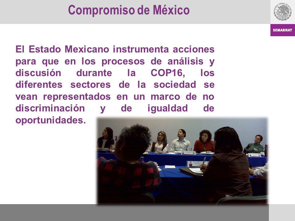 El Estado Mexicano instrumenta acciones para que en los procesos de análisis y discusión durante la COP16, los diferentes sectores de la sociedad se v