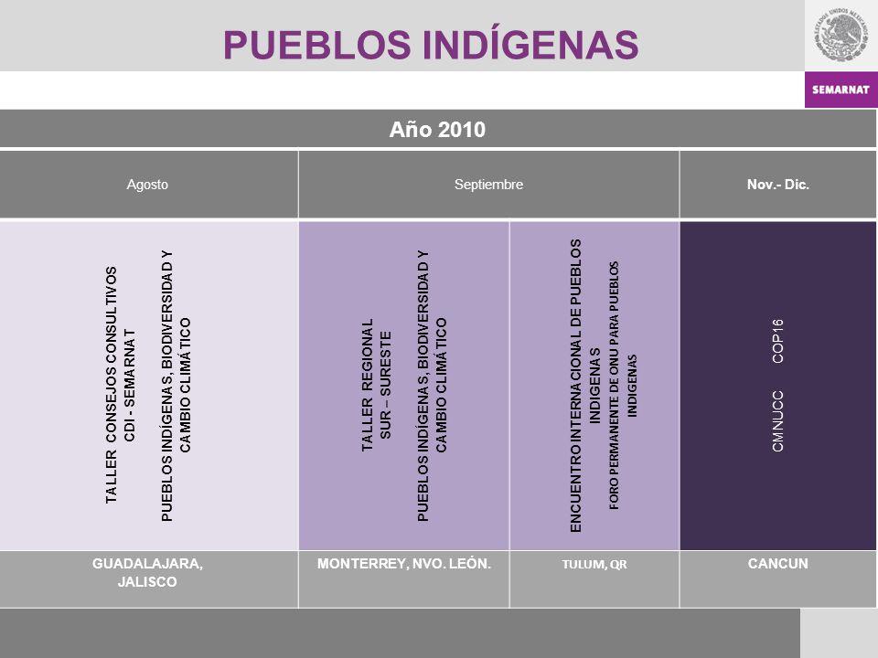 PUEBLOS INDÍGENAS Año 2010 AgostoSeptiembreNov.- Dic. TALLER CONSEJOS CONSULTIVOS CDI - SEMARNAT PUEBLOS INDÍGENAS, BIODIVERSIDAD Y CAMBIO CLIMÁTICO T
