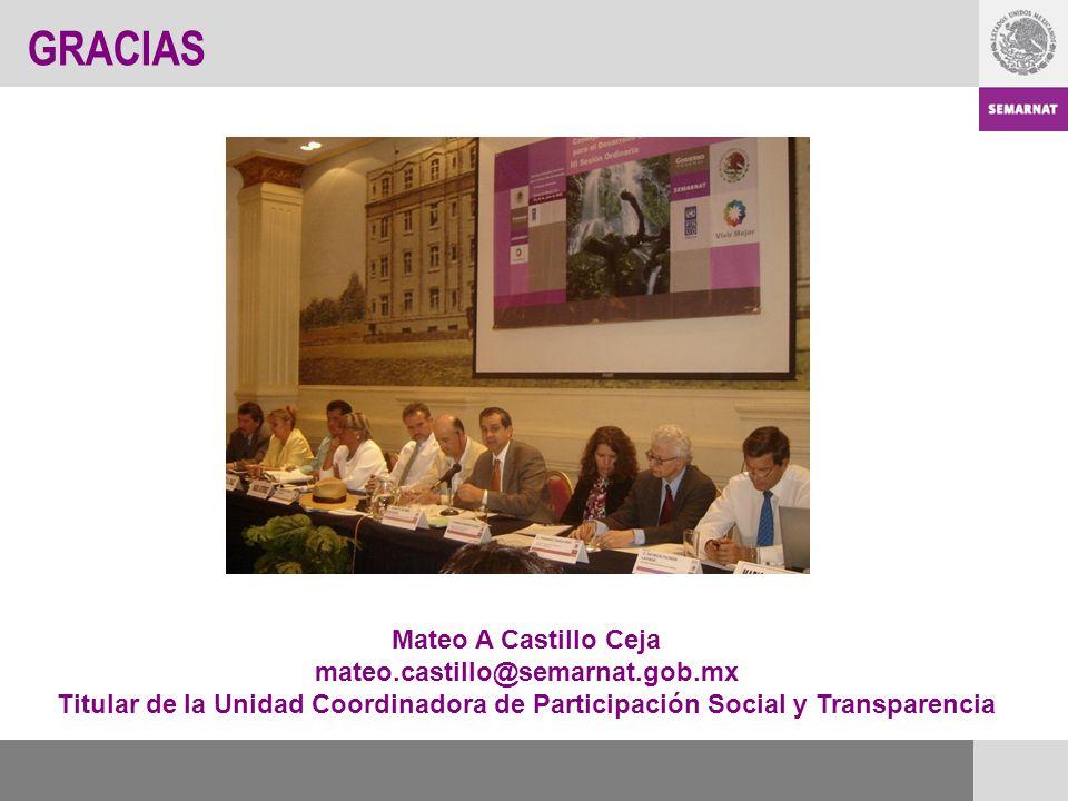 GRACIAS Mateo A Castillo Ceja mateo.castillo@semarnat.gob.mx Titular de la Unidad Coordinadora de Participación Social y Transparencia