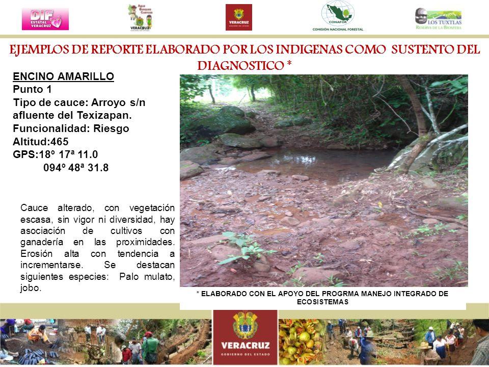 ENCINO AMARILLO Punto 1 Tipo de cauce: Arroyo s/n afluente del Texizapan. Funcionalidad: Riesgo Altitud:465 GPS:18º 17ª 11.0 094º 48ª 31.8 Cauce alter