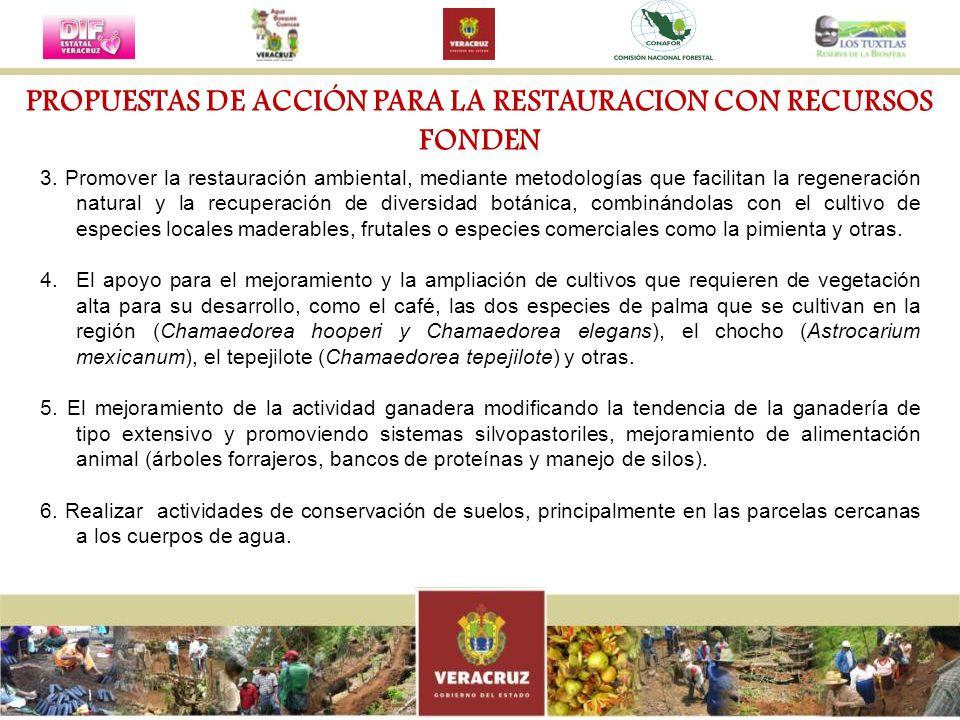3. Promover la restauración ambiental, mediante metodologías que facilitan la regeneración natural y la recuperación de diversidad botánica, combinánd