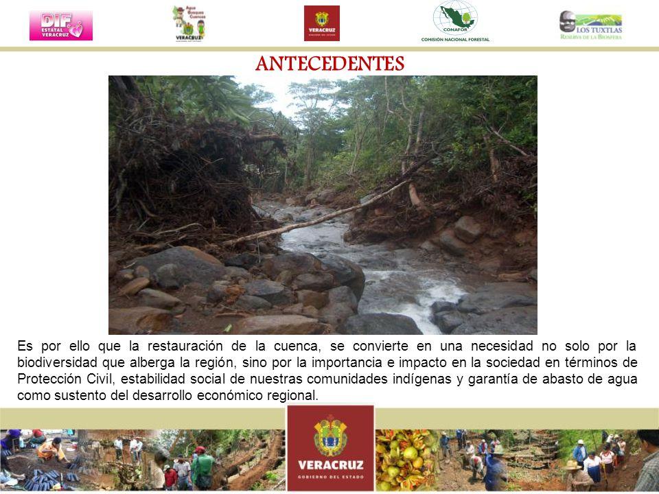 Es por ello que la restauración de la cuenca, se convierte en una necesidad no solo por la biodiversidad que alberga la región, sino por la importanci