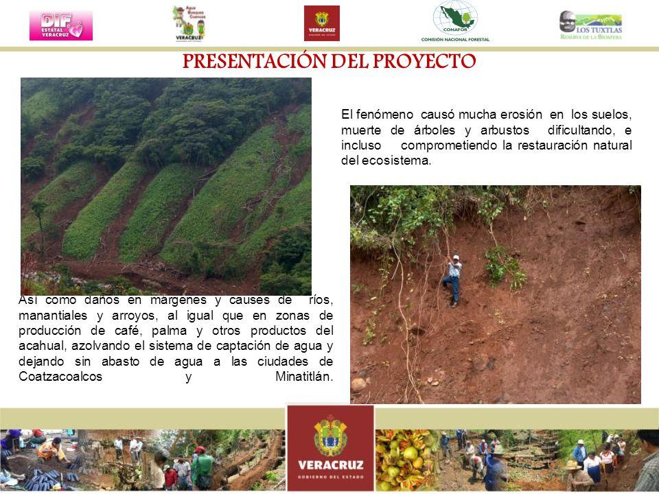 PRESUPUESTO EJERCIDO Y METAS LOGRADAS AccionesMetas Monto ejercido Avance físico (%) Conservación y restauración de las áreas riparias250 Km10, 000,000.00100 Protección y Restauración manantiales, nacimientos y escurrimientos 600 Has2,000,000.00100 Conservación productiva de áreas de vegetación primaria y secundaria 250 Has750,000.00100 Inducción de la Regeneración Natural300 Has3,000,000.00100 Obras de Conservación y Restauración de Suelos Forestales (se atenderá un mínimo de 350 derrumbes) 2,550 Has10,000,000.00100 Reforestación750 Has2,520,000.00100 Gastos de Operación y Supervisión848,100.00100 Total29´118,100.00100