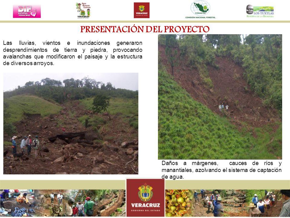 Las lluvias, vientos e inundaciones generaron desprendimientos de tierra y piedra, provocando avalanchas que modificaron el paisaje y la estructura de
