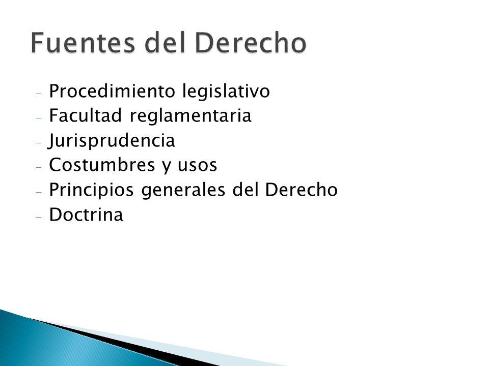 - Procedimiento legislativo - Facultad reglamentaria - Jurisprudencia - Costumbres y usos - Principios generales del Derecho - Doctrina