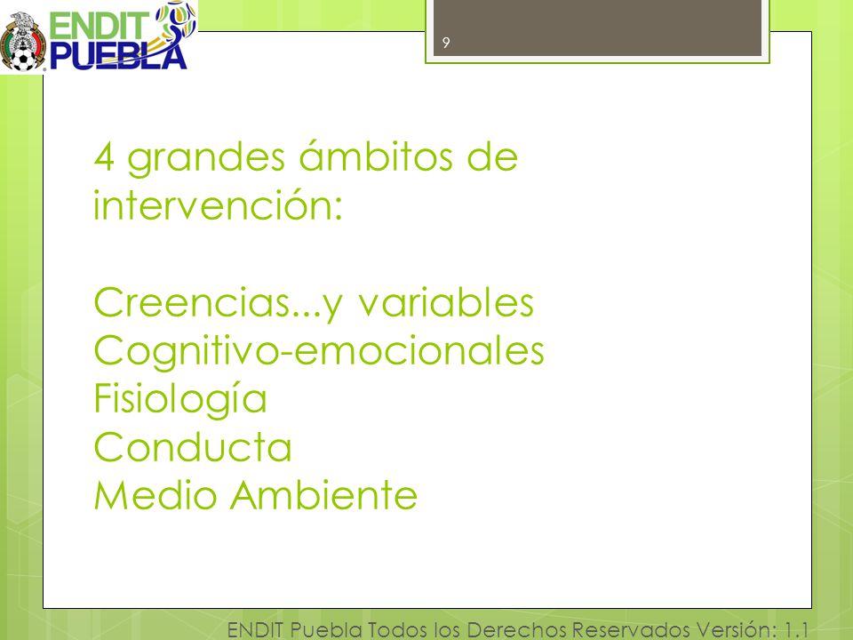 9 ENDIT Puebla Todos los Derechos Reservados Versión: 1.1 4 grandes ámbitos de intervención: Creencias...y variables Cognitivo-emocionales Fisiología