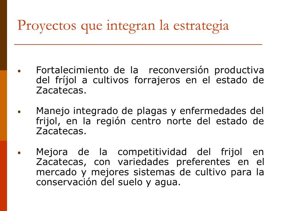 Proyectos que integran la estrategia Fortalecimiento de la reconversión productiva del fríjol a cultivos forrajeros en el estado de Zacatecas. Manejo