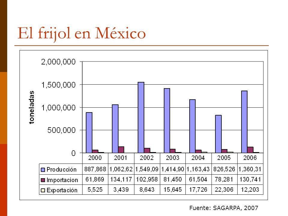 El frijol en México Fuente: SAGARPA, 2007