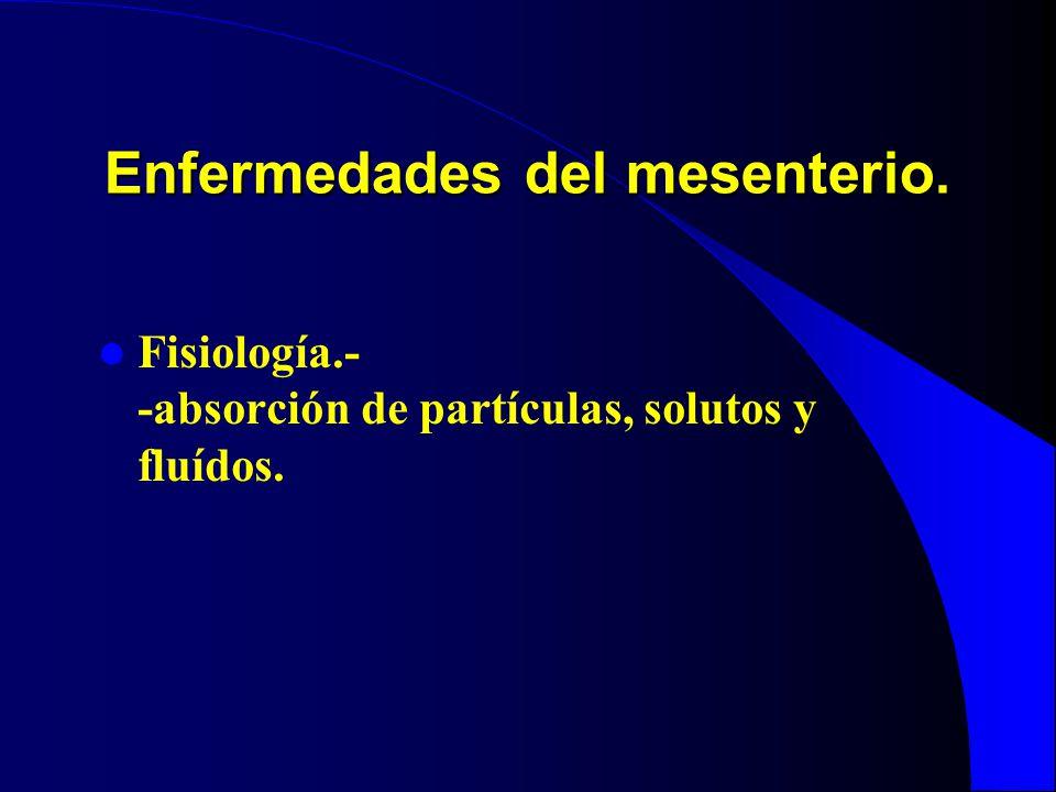 Enfermedades del mesenterio. Fisiología.- -absorción de partículas, solutos y fluídos.