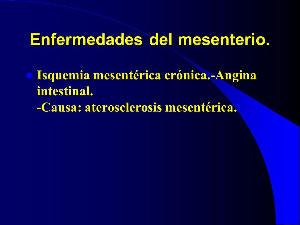 Enfermedades del mesenterio. Isquemia mesentérica crónica.-Angina intestinal. -Causa: aterosclerosis mesentérica.
