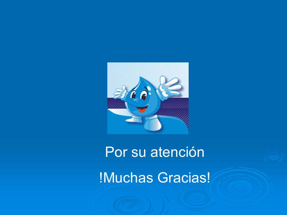 Por su atención !Muchas Gracias!