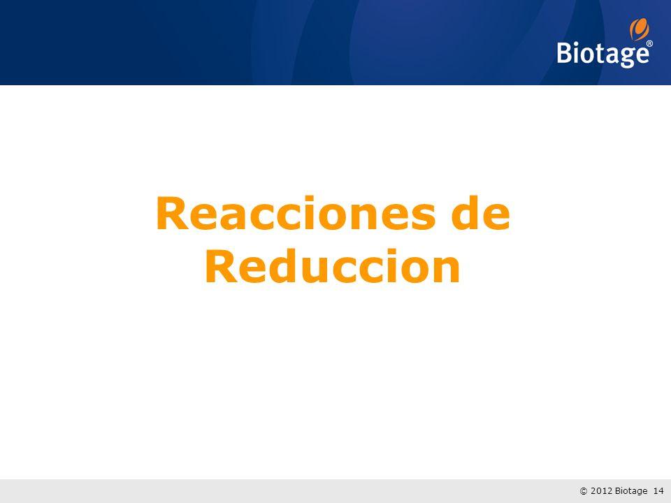 © 2012 Biotage 14 Reacciones de Reduccion
