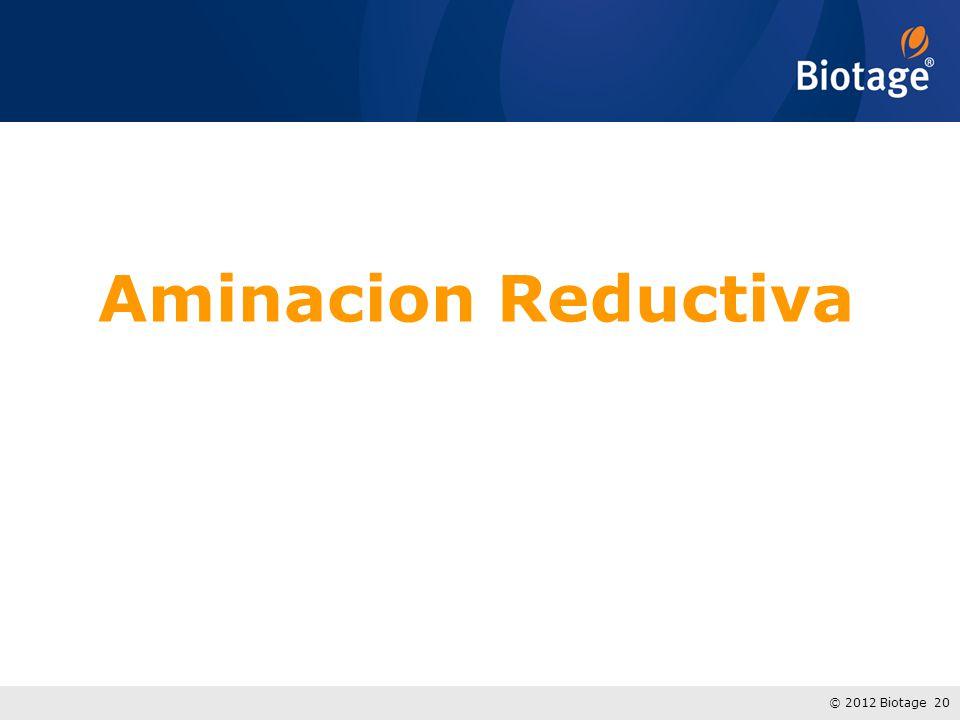 © 2012 Biotage 20 Aminacion Reductiva