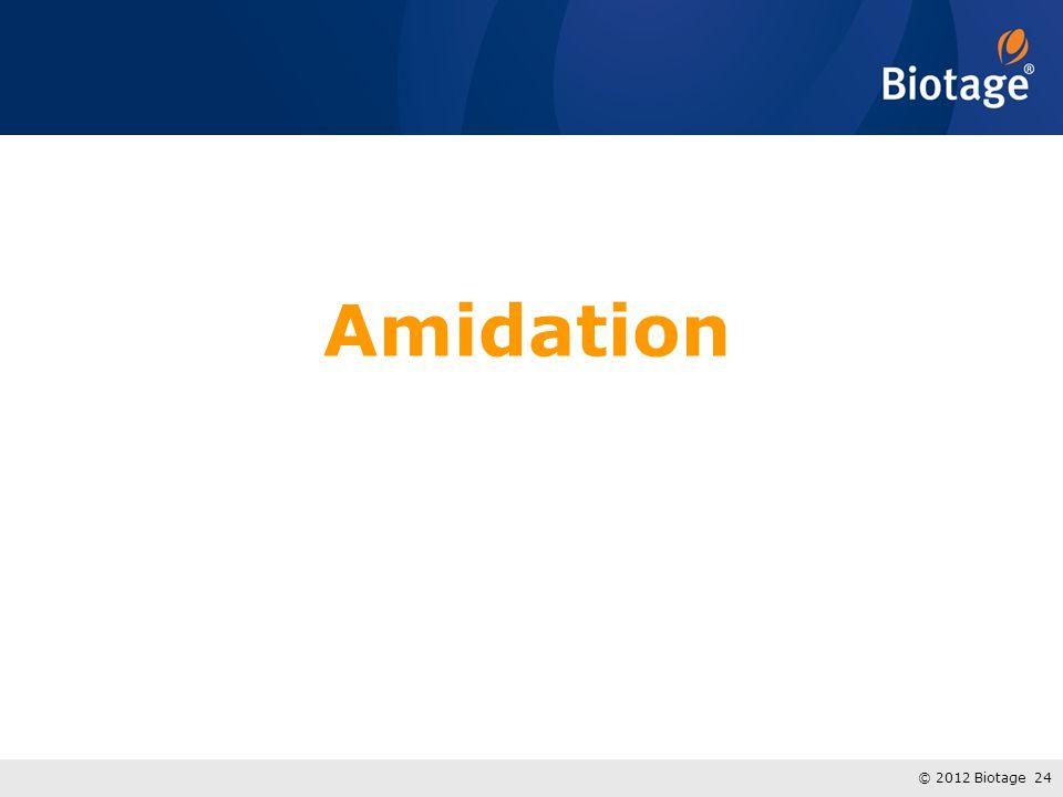 © 2012 Biotage 24 Amidation