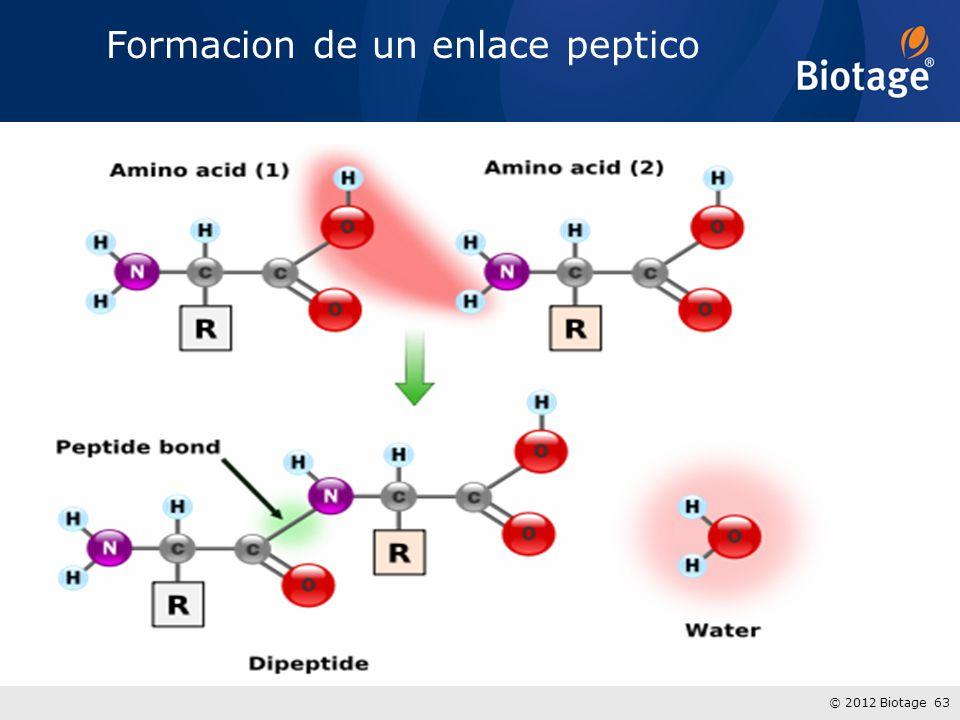 © 2012 Biotage 63 Formacion de un enlace peptico