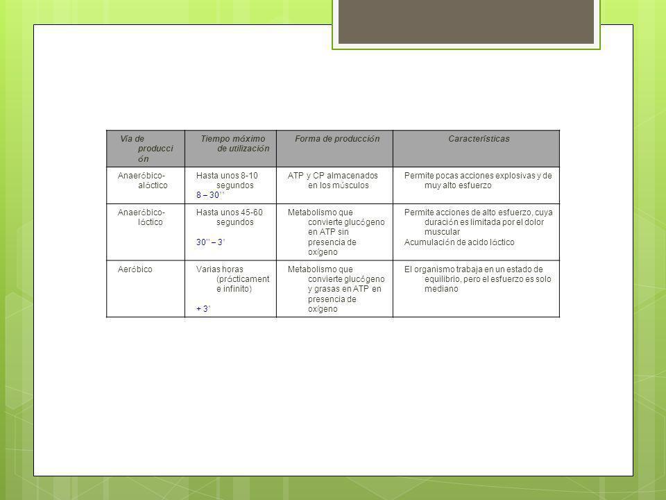 V í a de producci ó n Tiempo m á ximo de utilizaci ó n Forma de producci ó nCaracter í sticas Anaer ó bico- al á ctico Hasta unos 8-10 segundos 8 – 30 ATP y CP almacenados en los m ú sculos Permite pocas acciones explosivas y de muy alto esfuerzo Anaer ó bico- l á ctico Hasta unos 45-60 segundos 30 – 3 Metabolismo que convierte gluc ó geno en ATP sin presencia de ox í geno Permite acciones de alto esfuerzo, cuya duraci ó n es limitada por el dolor muscular Acumulaci ó n de acido l á ctico Aer ó bico Varias horas (pr á cticament e infinito) + 3 Metabolismo que convierte gluc ó geno y grasas en ATP en presencia de ox í geno El organismo trabaja en un estado de equilibrio, pero el esfuerzo es solo mediano