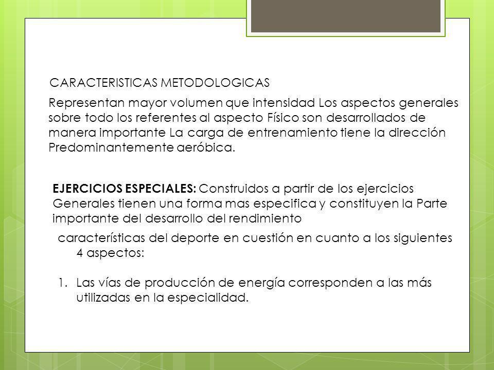 Teoría y metodología del Entrenamiento 2.Los grupos musculares involucrados en los ejercicios tienen gran importancia para los movimientos técnicos de la especialidad.