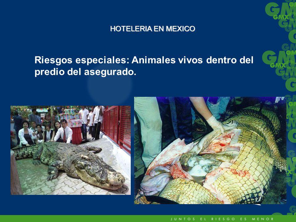 Riesgos especiales: Animales vivos dentro del predio del asegurado. HOTELERIA EN MEXICO
