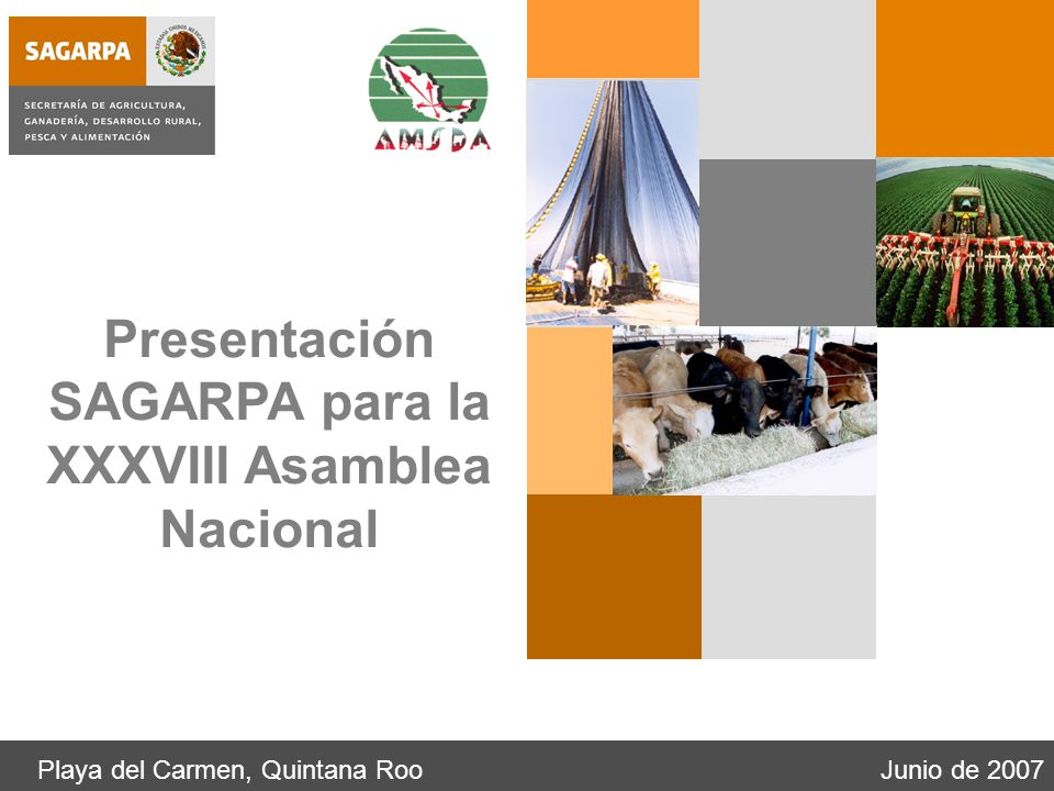 Playa del Carmen, Quintana RooJunio de 2007 Presentación SAGARPA para la XXXVIII Asamblea Nacional