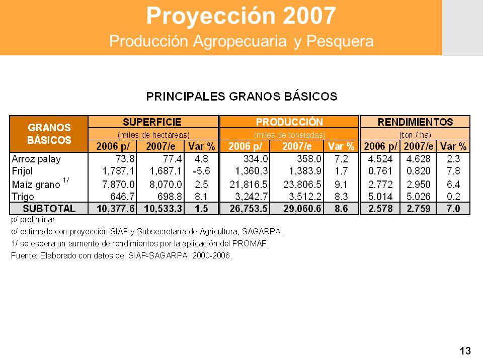 Proyección 2007 Producción Agropecuaria y Pesquera Proyección 2007 Producción Agropecuaria y Pesquera 13