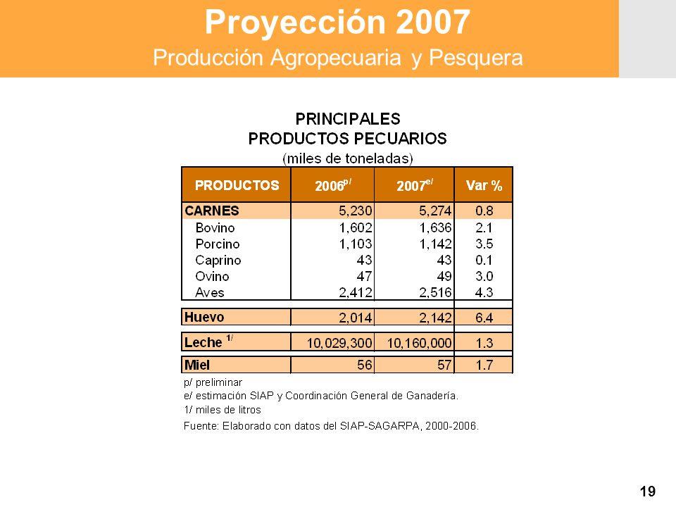 Proyección 2007 Producción Agropecuaria y Pesquera Proyección 2007 Producción Agropecuaria y Pesquera 19