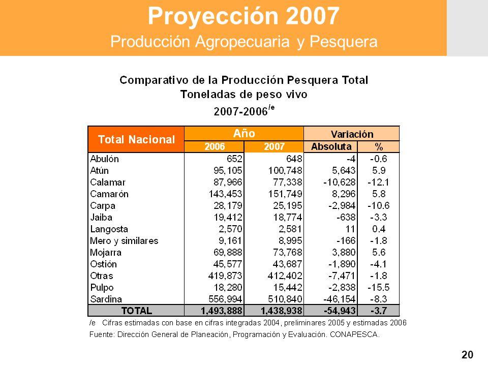Proyección 2007 Producción Agropecuaria y Pesquera Proyección 2007 Producción Agropecuaria y Pesquera 20