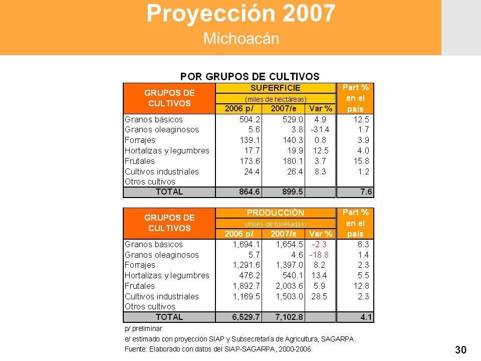 Proyección 2007 Producción Agropecuaria y Pesquera Proyección 2007 Producción Agropecuaria y Pesquera Proyección 2007 Michoacán 30