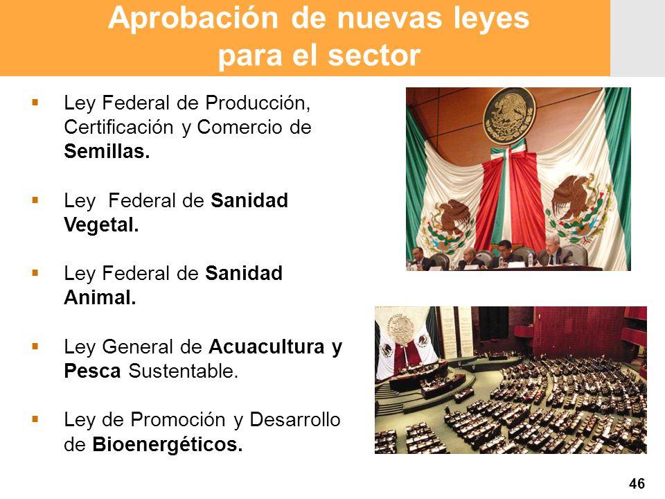 Proyección 2007 Producción Agropecuaria y Pesquera Proyección 2007 Producción Agropecuaria y Pesquera Aprobación de nuevas leyes para el sector Ley Federal de Producción, Certificación y Comercio de Semillas.